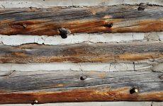 Древесина – до сих пор наиболее популярный материал для строительства