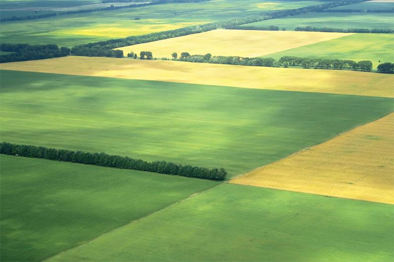 Просторные поля степной зоны