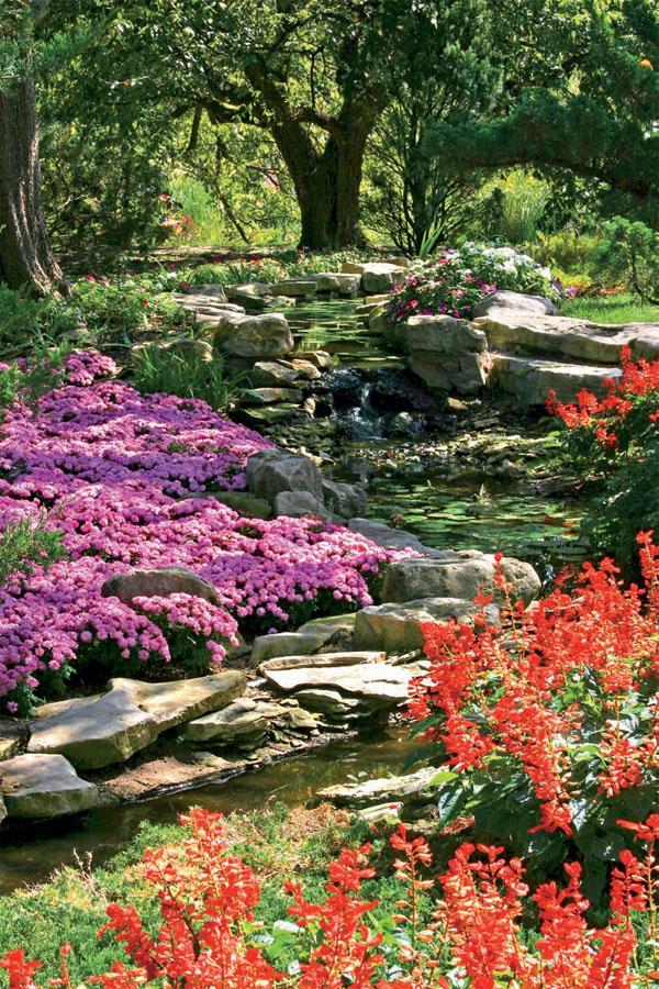 Растения для каменистых садов должны быть низкорослыми и с компактной кроной