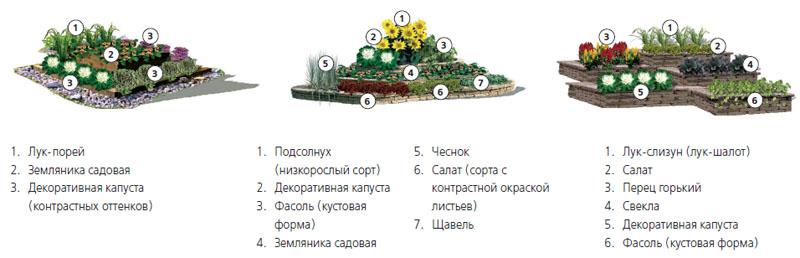 3 варианта оформления декоративного огорода