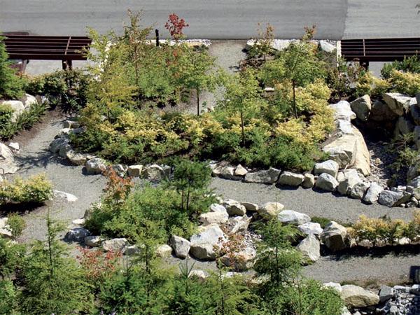 Сухой ручей является очень выгодным фоном для цветников и альпийских горок
