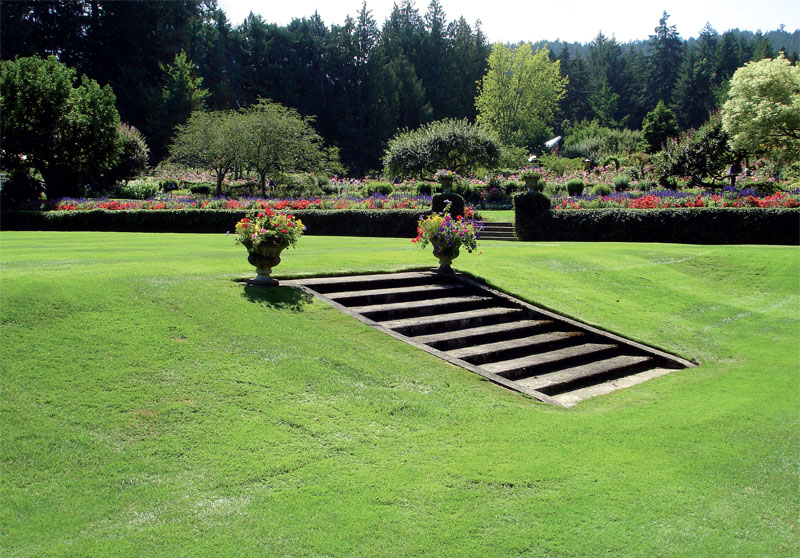 Английский газон с декоративными ступеньками (Фото: Татьяна Каминская)