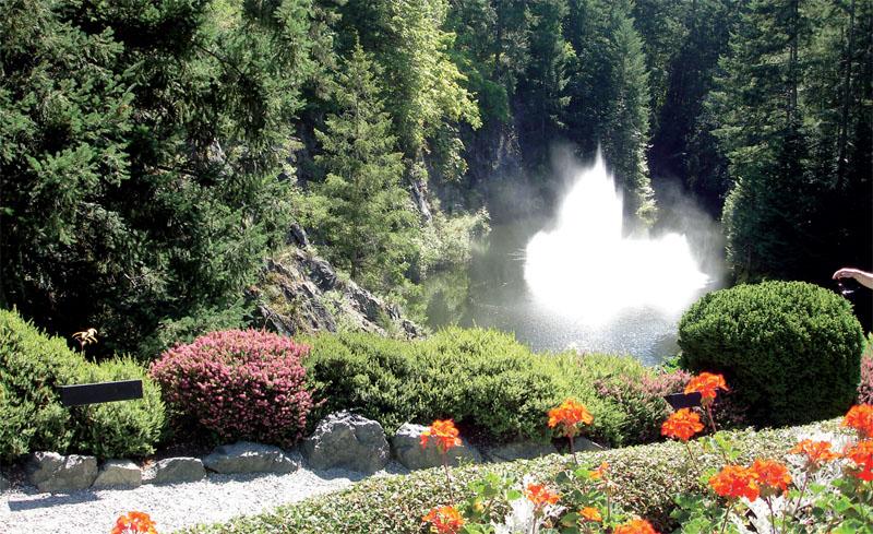 Поющий фонтан (Фото: Татьяна Каминская)