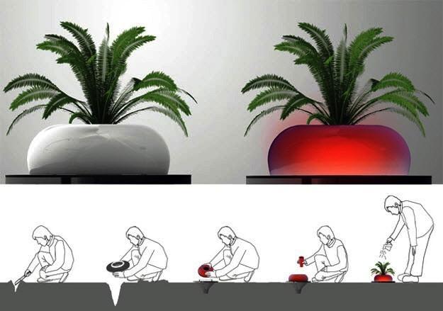 Гибрид растения и светильника