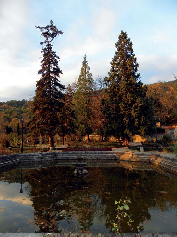 Массандровский парк (Фото: Екатерина Кузнецова, Евгений Кривенко)