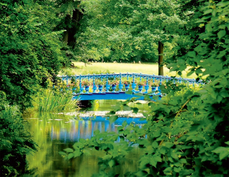 Голубой сад в поместье Германа фон Пюклер-Мускау