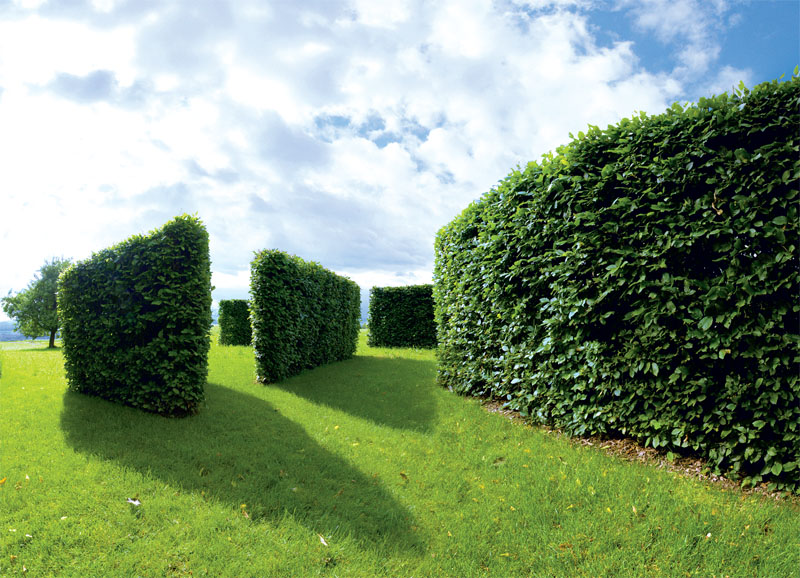 «Сад без границ» (Швейцария). Авторы — Jane Sarah Bihr-de Salis и Garten Lukoschus-Dinter