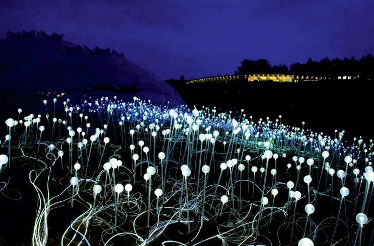 Световая инсталляция «Поле Света». Дизайнер Брюс Манро