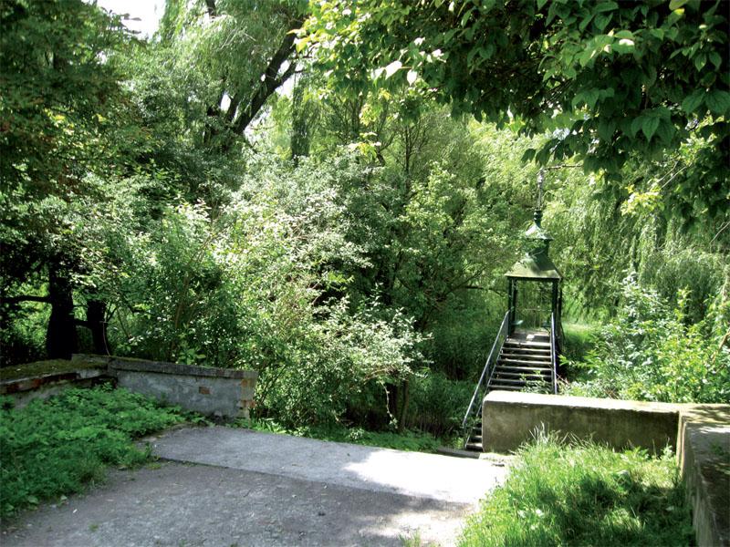 Парк возле замка (Фото: Ольга Камоликова)