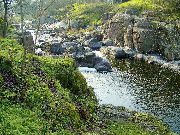 Камни и вода – идеальная композиция для парка и сада