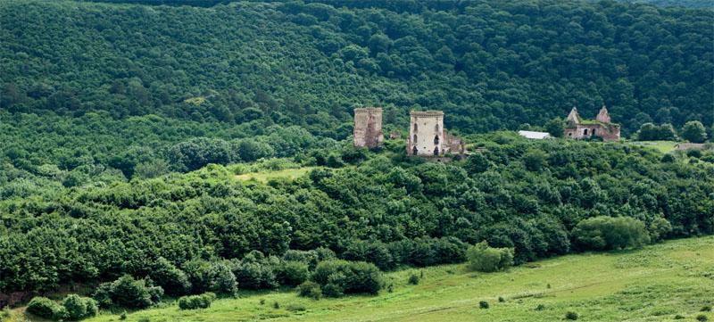 Среди лесного покрова нашлось место архитектурным формам (Фото: Юрий Касьянов)