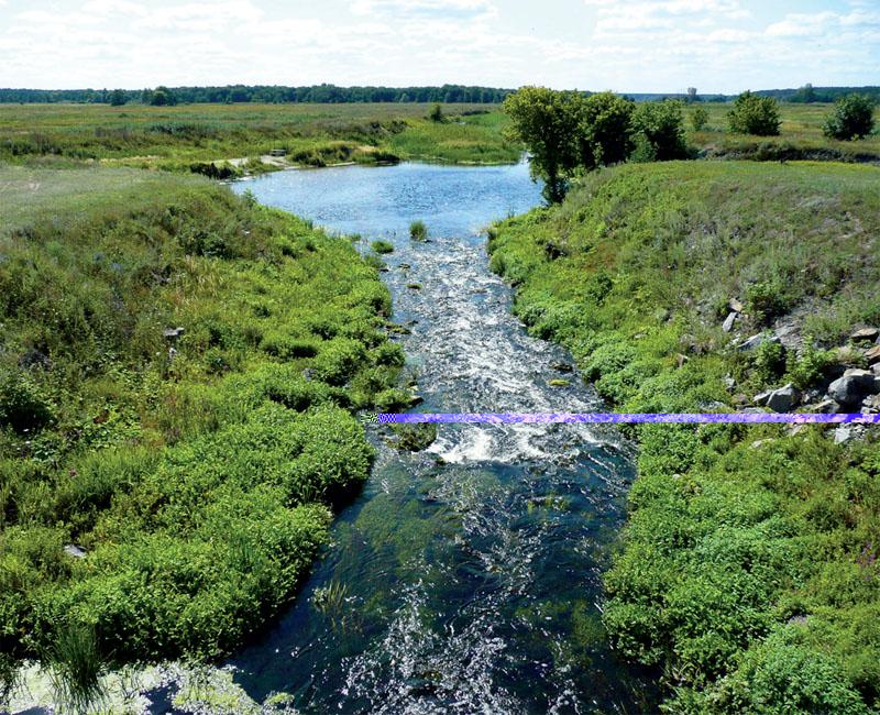 Заповедник опоясывает речка Бромлянка (Фото: PANORAMIO, FLICKR)