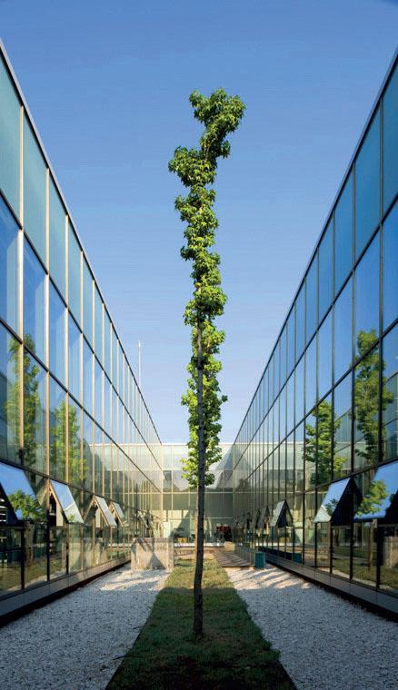 Обновленная текстильная фабрика Ipekyol в Эдирне (Emre Arolat Architects) (Фото: Aga Khan Award for Architecture Фото: Dragor Luftfoto / Thomas Mayer)