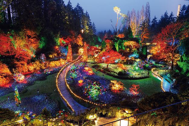 Освещение парка