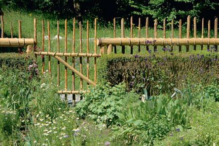 Выращивание сада пряных трав