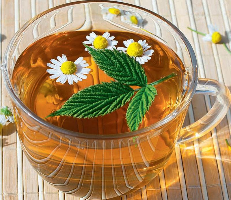 Ароматные травы для чайного букета