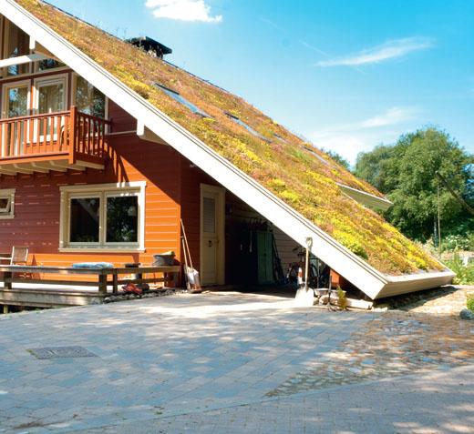 Утепление крыши мхом