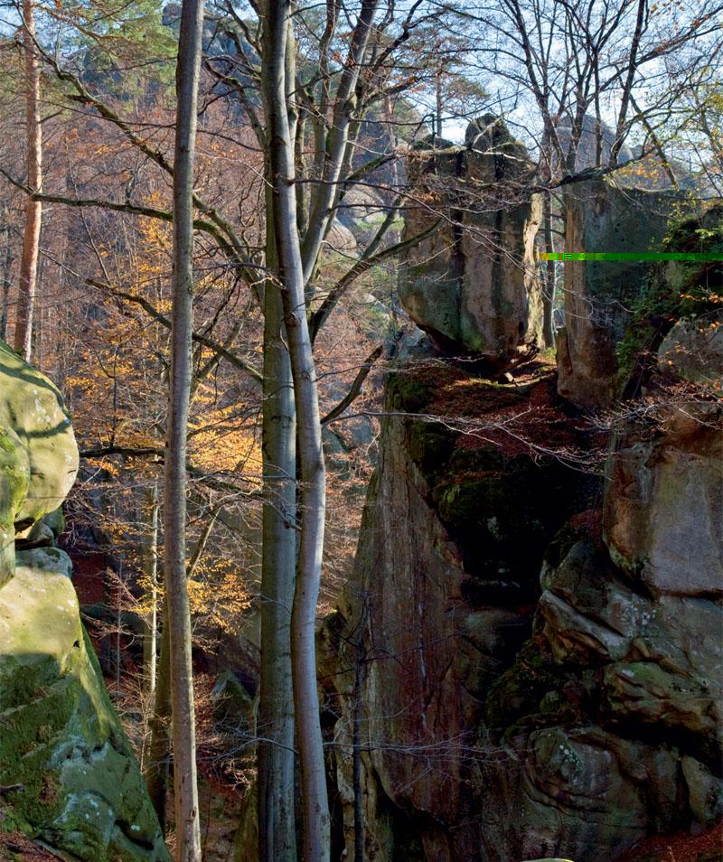 Основной массив скал образует внушительный полукруг площадью более гектара