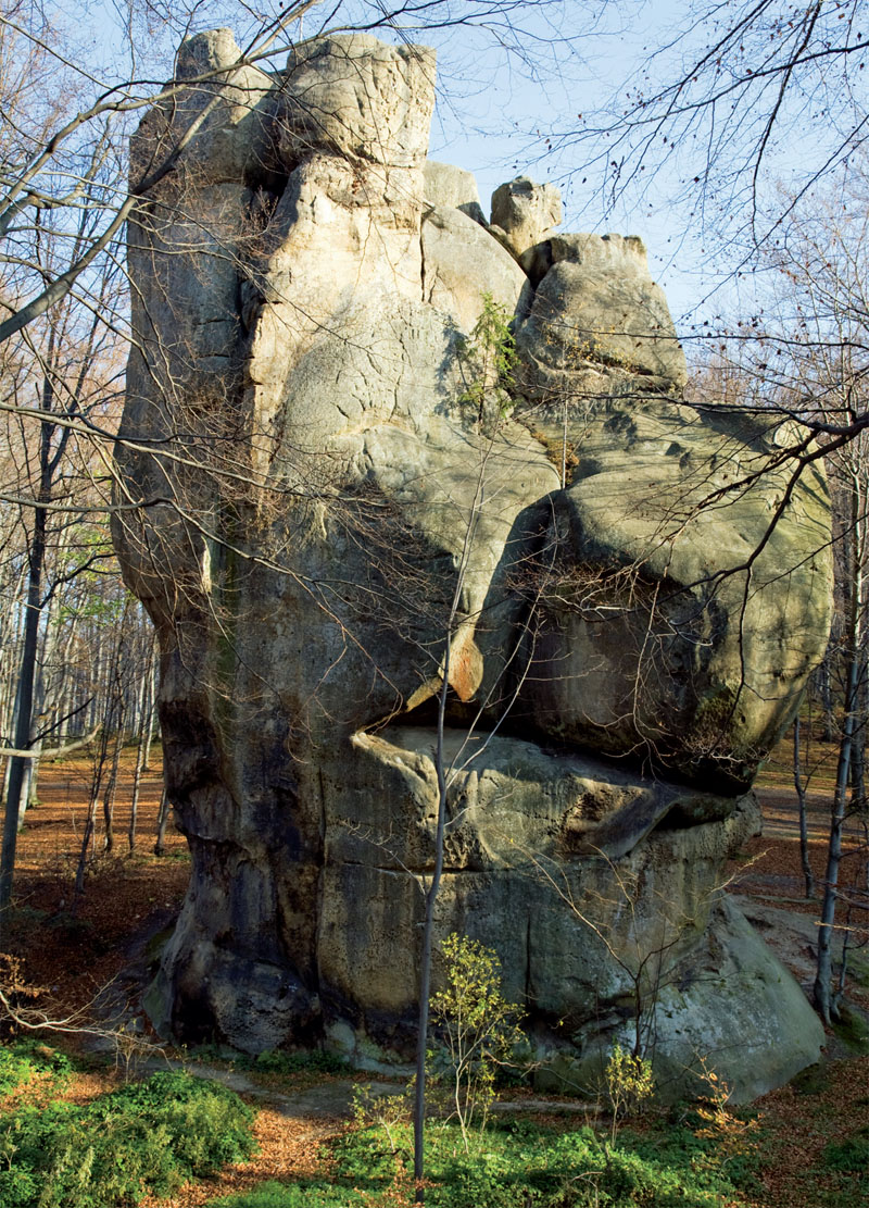 Скала в буковом лесу