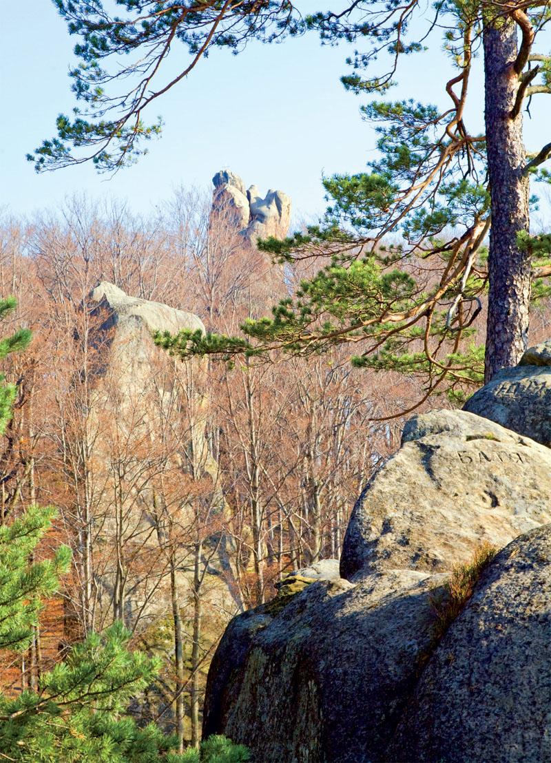 По легенде, в буково-еловом лесу есть камень, который по волшебному слову открывает вход в пещеру, заполненную сокровищами