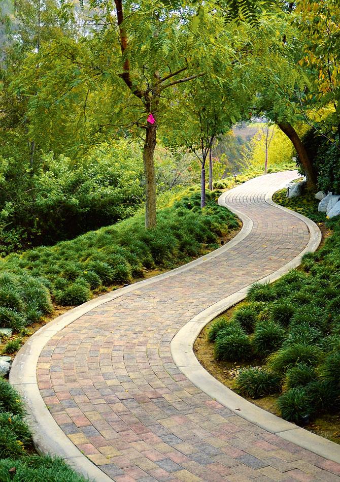 Но яркие цвета мощения добавят саду изысканности