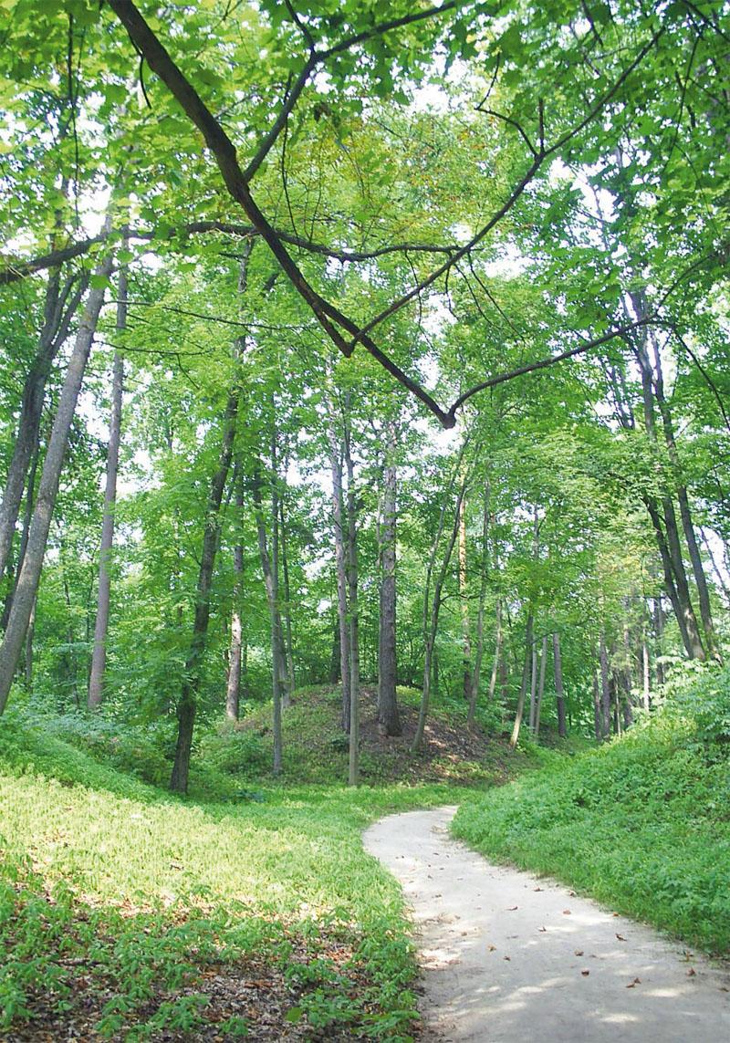 Парк порезан дорожками (Фото: Елена Грисюк)