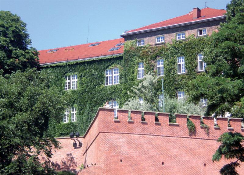 Вертикальное озеленение фасада загородного дома