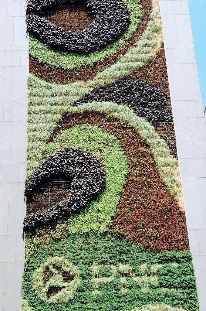 Вертикальная композиция из цветов