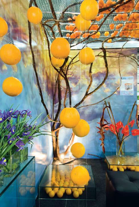 Инсталляция Небо цвета апельсина