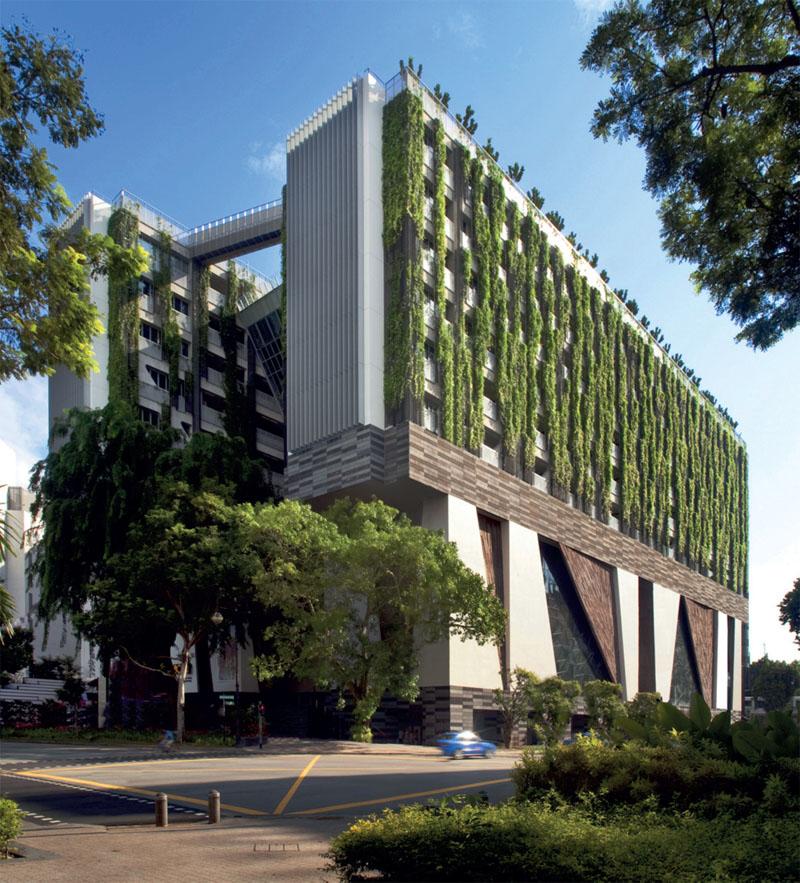 Здание школы искусств в Сингапуре бюро WOHA – победитель фестиваля в категории «учебные заведения» (Фото: Patrick Bingham-Hall)