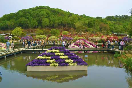 Оформление клумб в Asicaga Flower Park