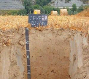 Возрастание сопротивления  грунта по мере увеличения глубины