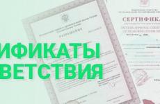 Создание компании и получение сертификата РПО