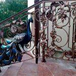 Кованые ворота – первая покупка для загородной усадьбы